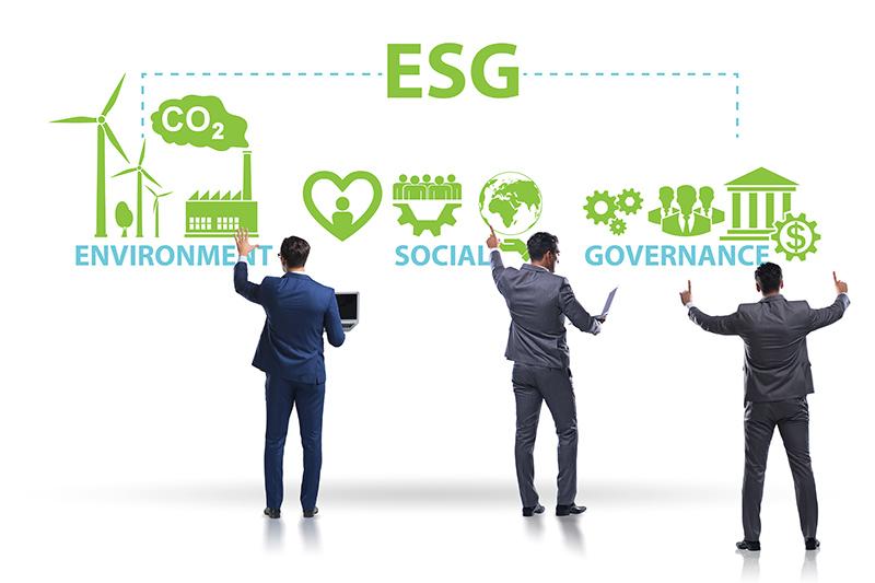 Mas afinal, o que é ESG?